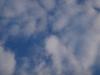 cetatuie-1-6-septembrie-2013-interad-si-ordo-in-tabara-de-reconectarecu-strabunii-29