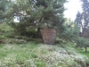 mormantul-parintelui-arsenie-boca-1-6-septembrie-2013-interad-si-ordo-in-tabara-de-reconectarecu-strabunii-9