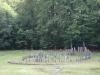 sarmizegetusa-regia-1-6-septembrie-2013-interad-si-ordo-in-tabara-de-reconectarecu-strabunii-10