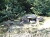 trovantii-din-costesti-1-6-septembrie-2013-interad-si-ordo-in-tabara-de-reconectarecu-strabunii-7