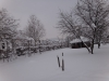 biserica-sfantul-nicolae-49-in-01-februarie-2014