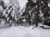 castelul-iulia-hasdeu-14-in-01-februarie-2014