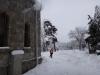 castelul-iulia-hasdeu-19-in-01-februarie-2014