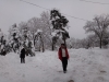 castelul-iulia-hasdeu-20-in-01-februarie-2014