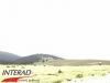 interad-excursie-prislop-sarmizegetusa-regia-fetele-albe-cetatuia-blidaru-transalpina-120