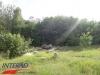 interad-excursie-prislop-sarmizegetusa-regia-fetele-albe-cetatuia-blidaru-transalpina-134