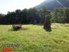 interad-excursie-prislop-sarmizegetusa-regia-fetele-albe-cetatuia-blidaru-transalpina-32