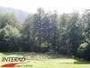 interad-excursie-prislop-sarmizegetusa-regia-fetele-albe-cetatuia-blidaru-transalpina-35