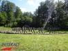 interad-excursie-prislop-sarmizegetusa-regia-fetele-albe-cetatuia-blidaru-transalpina-37