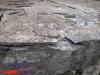 interad-excursie-prislop-sarmizegetusa-regia-fetele-albe-cetatuia-blidaru-transalpina-46