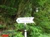 interad-excursie-prislop-sarmizegetusa-regia-fetele-albe-cetatuia-blidaru-transalpina-51