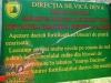 interad-excursie-prislop-sarmizegetusa-regia-fetele-albe-cetatuia-blidaru-transalpina-53
