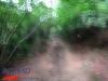 interad-excursie-prislop-sarmizegetusa-regia-fetele-albe-cetatuia-blidaru-transalpina-74
