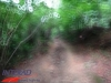 interad-excursie-prislop-sarmizegetusa-regia-fetele-albe-cetatuia-blidaru-transalpina-74_0