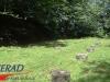 interad-excursie-prislop-sarmizegetusa-regia-fetele-albe-cetatuia-blidaru-transalpina-92