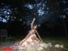 interad-excursie-prislop-sarmizegetusa-regia-fetele-albe-cetatuia-blidaru-transalpina-98