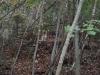 grota-preotului-sabareanu-4manastirea-polovragi-tabara-initiatica-interad-travel-infinit-04-octombrie-2013