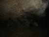 pestera-podul-lui-dumnezeu-15-tabara-initiatica-interad-travel-infinit-04-octombrie-2013