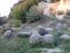 trovantii-din-costesti-5-tabara-initiatica-interad-travel-infinit-04-octombrie-2013
