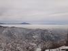 cetatea-tampa-25-in-08-februarie-2014