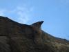 corbii-de-piatra-37-in-08-martie-2014