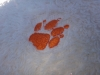 calatoria-in-lumina-09-noimebrie-2013-excursie-initiatica-la-dervent-si-pestera-sfantului-andrei-interad-travel-infinit-49