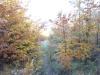 tara-luanei-55-12-octombrie-2013-interad-travel-infinit-tabara-initiatica
