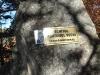 tara-luanei-agatonul-vechi-12-octombrie-2013-interad-travel-infinit-tabara-initiatica