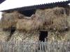 tara-luanei-alunis-20-12-octombrie-2013-interad-travel-infinit-tabara-initiatica