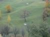 tara-luanei-alunis-21-12-octombrie-2013-interad-travel-infinit-tabara-initiatica