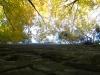 tara-luanei-bisericuta-lui-iosif-11-12-octombrie-2013-interad-travel-infinit-tabara-initiatica
