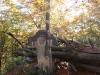 tara-luanei-crucea-spatarului-2-12-octombrie-2013-interad-travel-infinit-tabara-initiatica