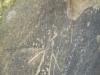 tara-luanei-grota-fundul-pesterii-3-12-octombrie-2013-interad-travel-infinit-tabara-initiatica