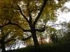 tara-luanei-nucu-1-13-octombrie-2013-interad-travel-infinit-tabara-initiatica