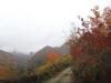 tara-luanei-nucu-2-13-octombrie-2013-interad-travel-infinit-tabara-initiatica