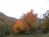 tara-luanei-nucu-7-13-octombrie-2013-interad-travel-infinit-tabara-initiatica