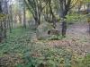 tara-luanei-nucu-bisericuta-funfatura-26-13-octombrie-2013-interad-travel-infinit-tabara-initiatica