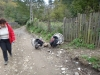 tara-luanei-ruginoasa-1-13-octombrie-2013-interad-travel-infinit-tabara-initiatica