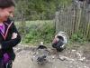 tara-luanei-ruginoasa-3-13-octombrie-2013-interad-travel-infinit-tabara-initiatica