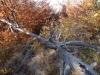 tara-luanei-varful-turtudui-22-12-octombrie-2013-interad-travel-infinit-tabara-initiatica