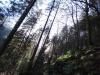 catre-grota-48-tabara-initiatica-15-17-noiembrie-2013-salina-slanic-grota-parintelui-arsenie-boca-templul-dorintelor-de-la-sinca-veche