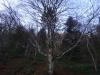 catre-grota-8-tabara-initiatica-15-17-noiembrie-2013-salina-slanic-grota-parintelui-arsenie-boca-templul-dorintelor-de-la-sinca-veche