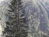 chilia-parintelui-arsenie-boca-13-tabara-initiatica-15-17-noiembrie-2013-salina-slanic-grota-parintelui-arsenie-boca-templul-dorintelor-de-la-sinca-veche