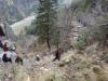 chilia-parintelui-arsenie-boca-23-tabara-initiatica-15-17-noiembrie-2013-salina-slanic-grota-parintelui-arsenie-boca-templul-dorintelor-de-la-sinca-veche