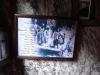 chilia-parintelui-arsenie-boca-38-tabara-initiatica-15-17-noiembrie-2013-salina-slanic-grota-parintelui-arsenie-boca-templul-dorintelor-de-la-sinca-veche