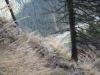 chilia-parintelui-arsenie-boca-50-tabara-initiatica-15-17-noiembrie-2013-salina-slanic-grota-parintelui-arsenie-boca-templul-dorintelor-de-la-sinca-veche