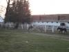herghelia-12-tabara-initiatica-15-17-noiembrie-2013