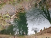 iazul-parintelui-arsenie-boca-1-8 tabara-initiatica-15-17-noiembrie-2013