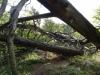 catre-varful-turtudui-1-tabara-tara-luanei-interad-15-18-august-2013