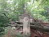 crucea-spatarului-1-tabara-tara-luanei-interad-15-18-august-2013